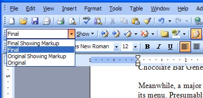 Viewing the document in its final form in Word XP