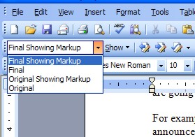 Showing Markup in Word XP