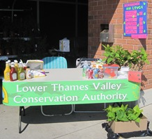 "A table in front of a brick wall with condiments, pop, chips, and seedlings on top of it, and a green sign taped to the front that says, ""Lower Thames Valley Conservation Authority."""