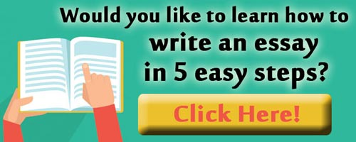 Online essay writing course
