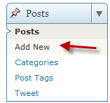 The Posts menu in WordPress
