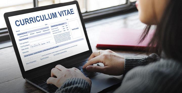 Curriculum Vitae Example Scribendi